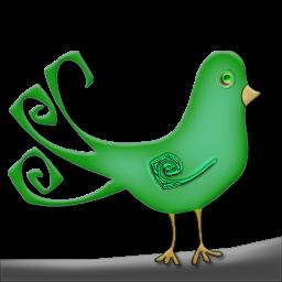 Bird-in-Tree-11