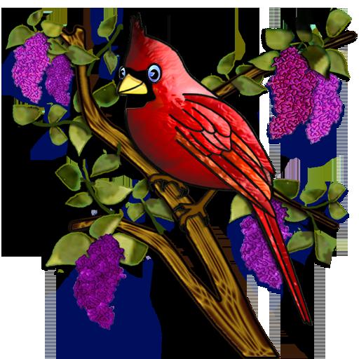 Cardinals&Lilacs2