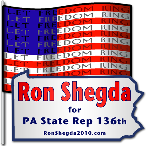 Logo for Ron Shegda Campaign Buttons