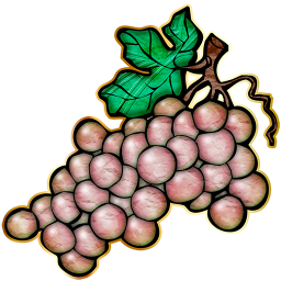 Chablis Grapes_72-512x512