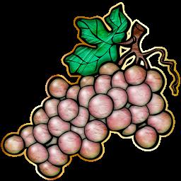 Chablis Grapes_72-512x512