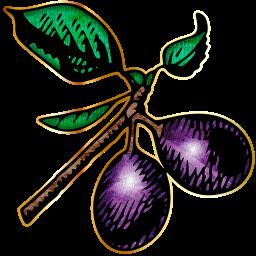 plums_72-512x512